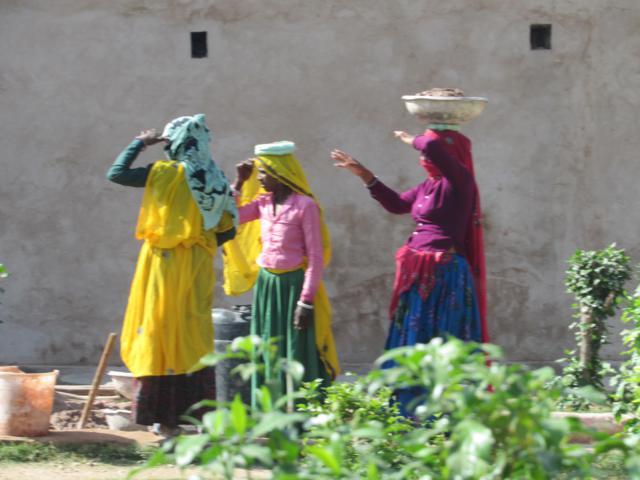 chand baori (3)