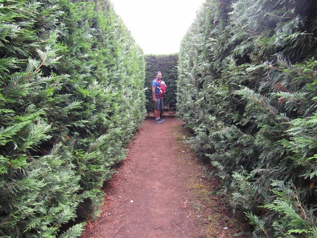 laberinto de villapresente cantabria