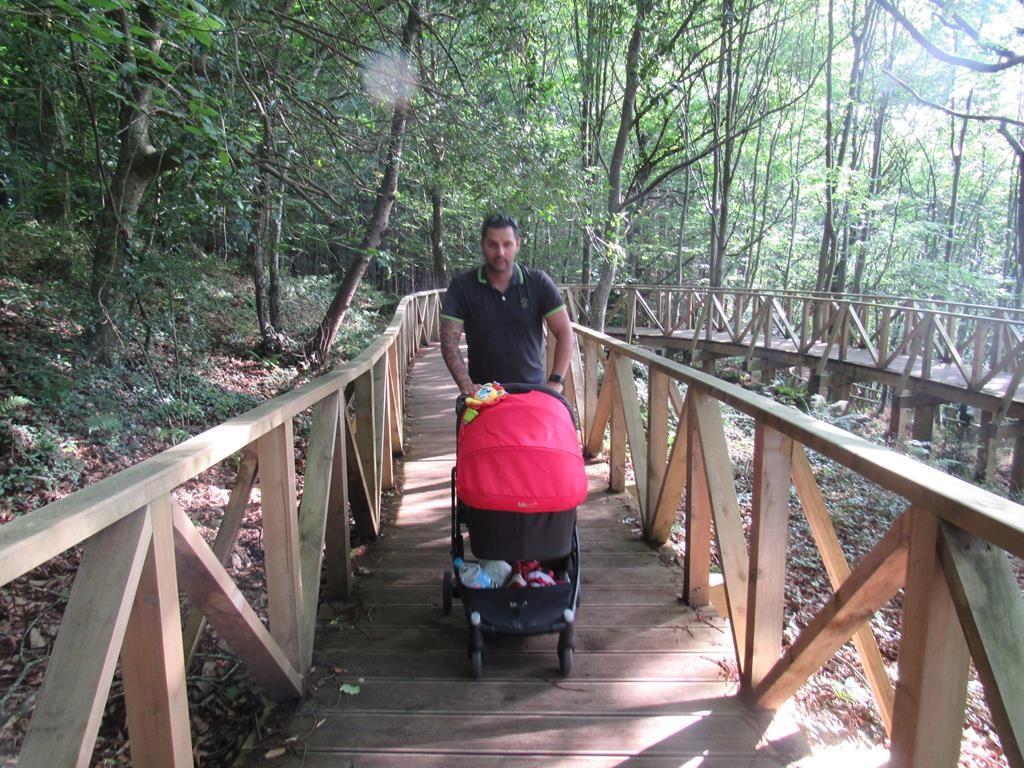 parque de secuoyas Cantabria