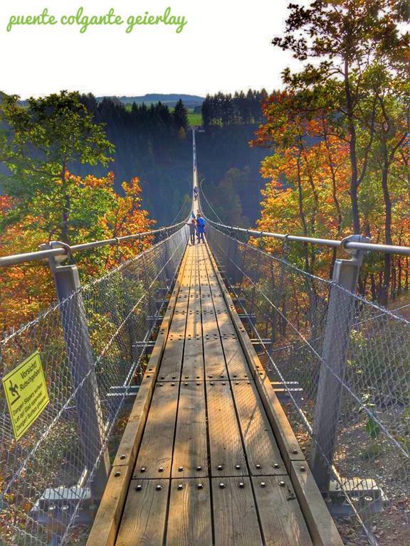 Puente colgante geierlay