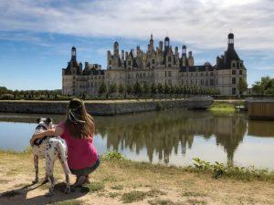 Los mejores Castillos del Loira para visitar con perro