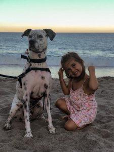 Mojácar con perro. Playas y restaurantes.